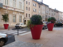 rue_du_college (Small)