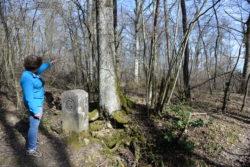 Photo : Spot 4-Borne 113-Bois de Serves-Les Arbères-borne 115-Spot 5-2017-Monfray (44) © Département de l'Ain_C.Monfray